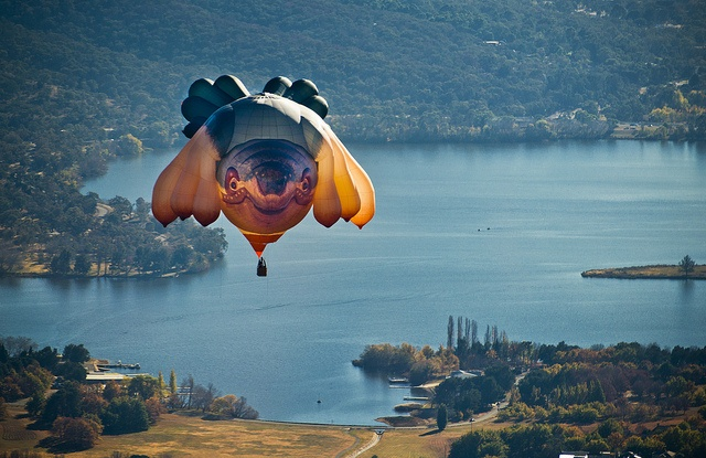 Patricia Piccinini's Skywhale over Canberra