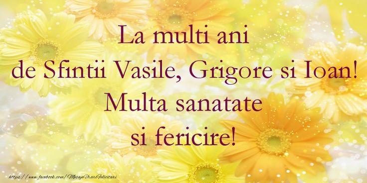 La multi ani de Sfintii Vasile, Grigore si Ioan! Multa sanatate si fericire!