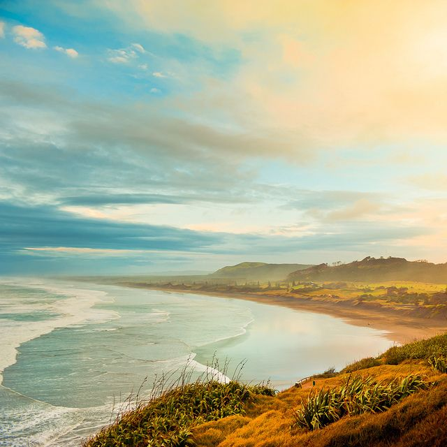 Muriwai Beach - Auckland, New Zealand >> Beautiful colors!