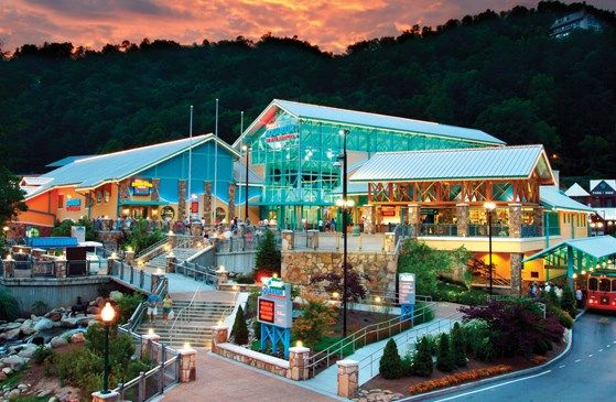 1000 ideas about gatlinburg coupons on pinterest pigeon for Deals cabins gatlinburg tn