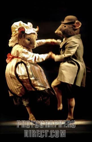 the tales of beatrix potter royal ballet - Google Search