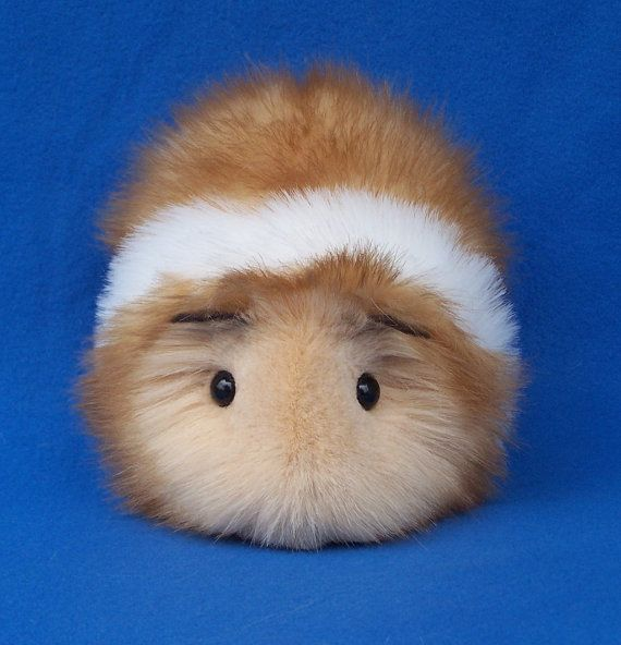 Guinea Pig Toys : Honey and white guinea pig toys stuffed