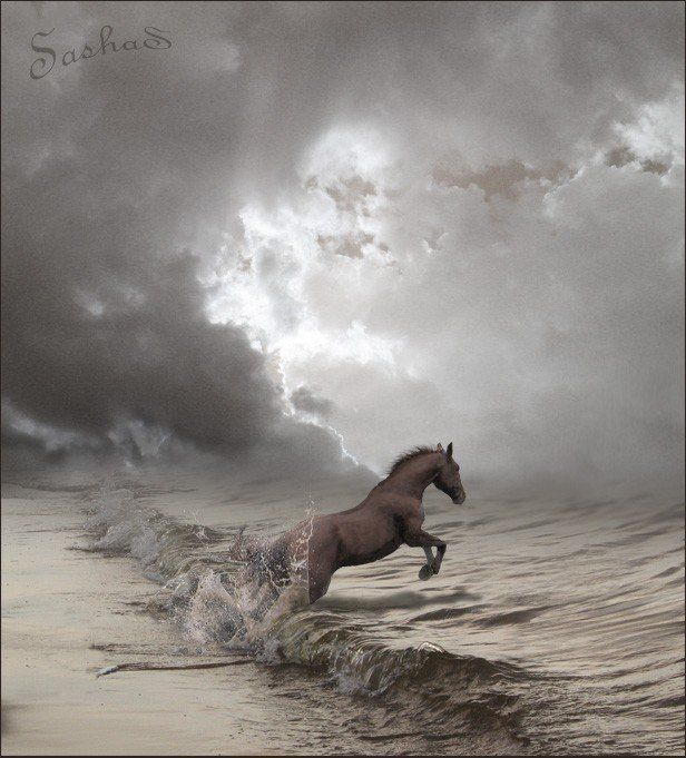 Horses jumping into waves.