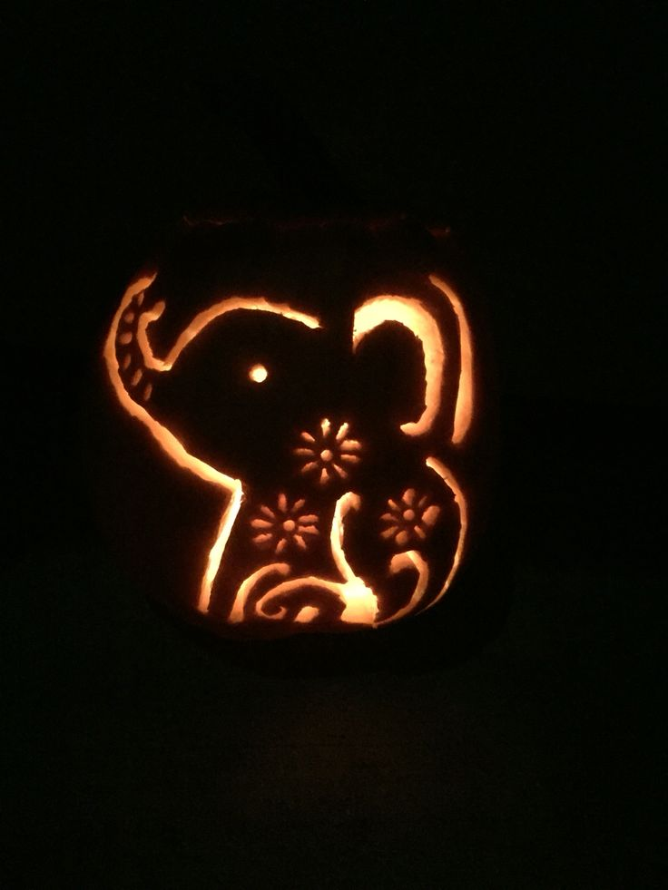 Cute elephant pumpkin carving