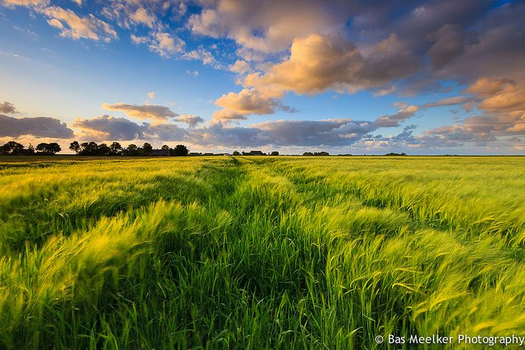 Fields of light - Rural Groningen, The Netherlands by Bas Meelker, Flickr