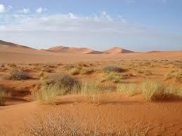 Desierto cálido. Las regiones en las que la precipitación pluvial es menor de 25 cm anuales, o los lugares en los que hay más lluvia pero ésta no se distribuye uniformemente en el transcurso del año, se clasifican en general como desiertos. La escasez de lluvia puede deberse a la  alta presión subtropical.
