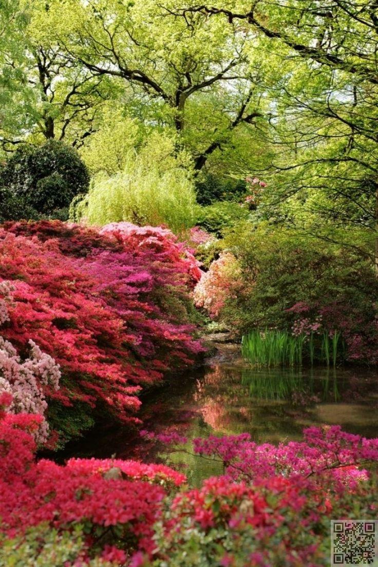 26 best yard images on pinterest garten house gardens for Garden design ideas northern ireland