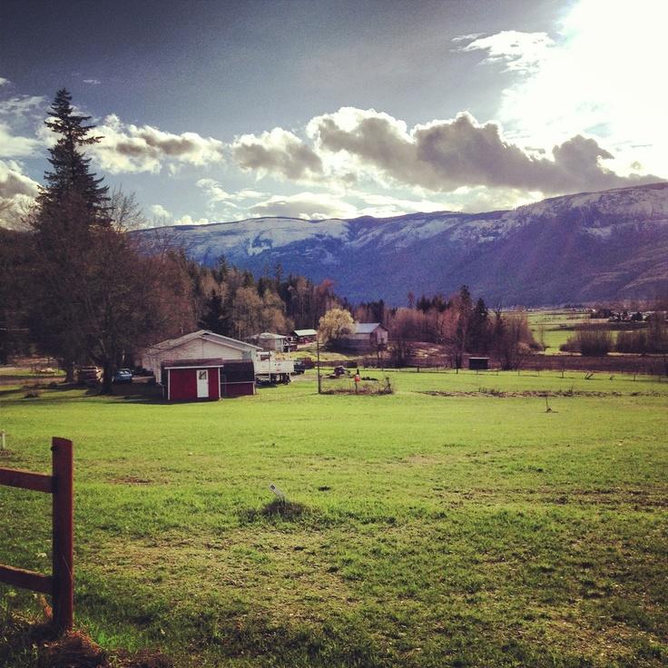 Foothill Road, Salmon Arm, British Columbia, Canada. Thompson-Okanagan. Follow our daily adventures at www.facebook.com/brightsideyoga