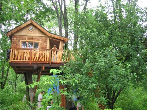 41 best images about tree house on pinterest trees a for Cool small tree houses
