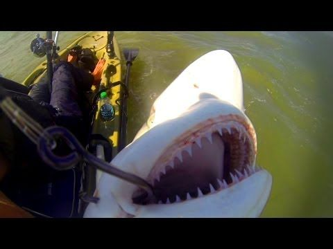 I Will Teach You How To Surf Fish - Catch Massive Redfish And Shark - YouTube