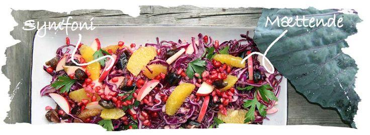 Rødkålssalat. Salat Tøsen
