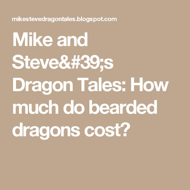 Mike and Steve's Dragon Tales: How much do bearded dragons cost?