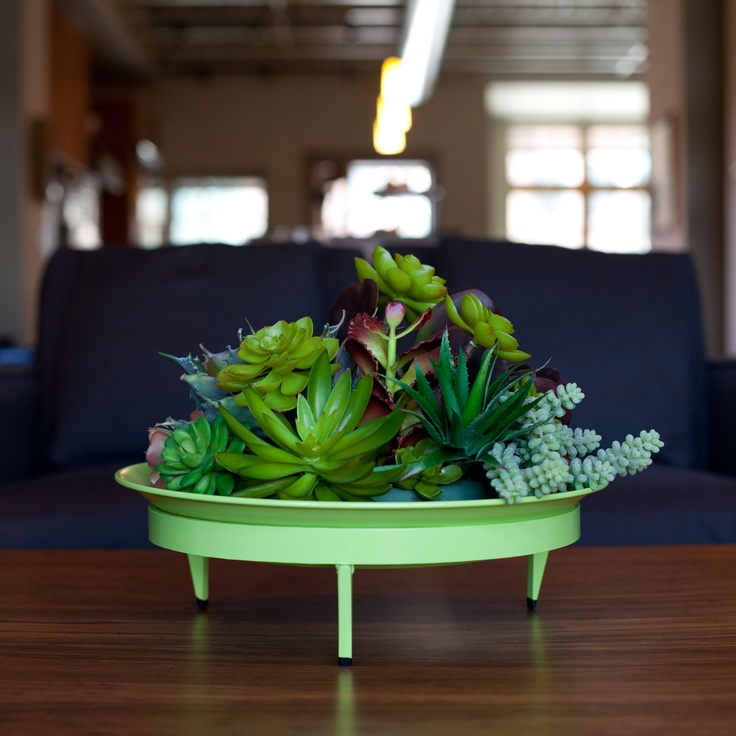 Adorable!! a little modern succulent planter. just fab.: Basin Mod, Mod Dish, Green, Steel Life, Dishes, Planters, Delicious, Garden