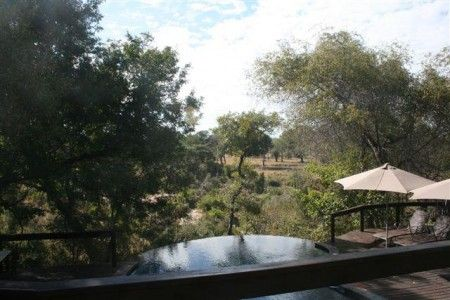 Elephant Plains pool in the bush! http://www.pridelodges.com/index.php/game-lodges/classic/elephant-plains/