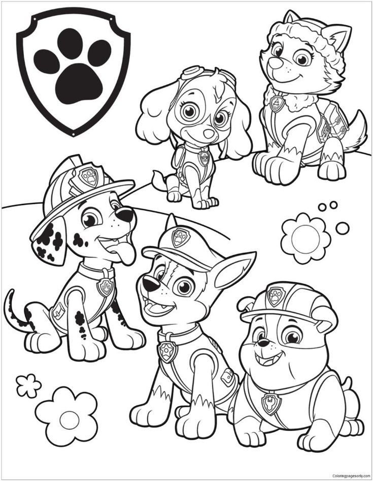 Pin By Anna On Colouring Sheets For School Paw Patrol Coloring Pages Paw Patrol Coloring Cartoon Coloring Pages