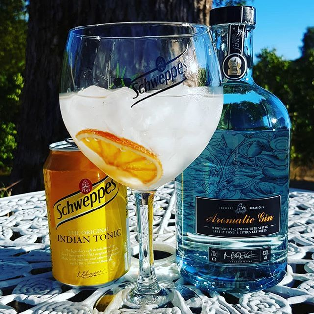 Tesco Finest Aromatic Gin @schweppes Indian Tonic Water dried orange wheel #gin #gt #tonic #gintonic #dandywithlens DandyWithLens.com