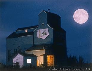 Grain Elevator in the prairies (royalalbertamuseum.ca)