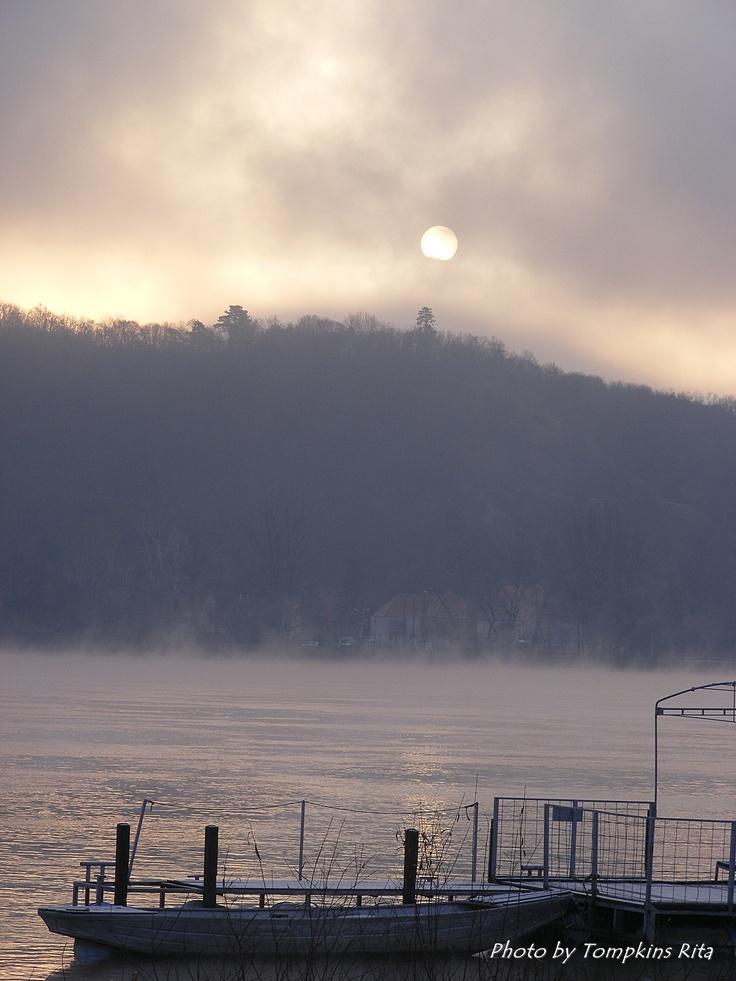Misty morning in January