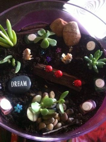 My very first fairy garden, I get so much joy from making these I thought I would share it around.