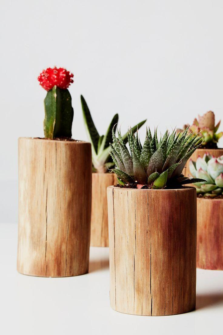 Mini Cactus Planter Set Succulent Planter Rustic Plant Etsy In 2020 Cactus Plant Pots Rustic Flowers Plant Decor