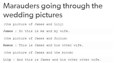 The Marauders. James has three wives: Lily, Sirius and his broomstick.