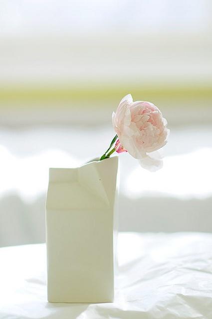 Peonies are the best!  Got milk? by jutta / kootut murut, via Flickr