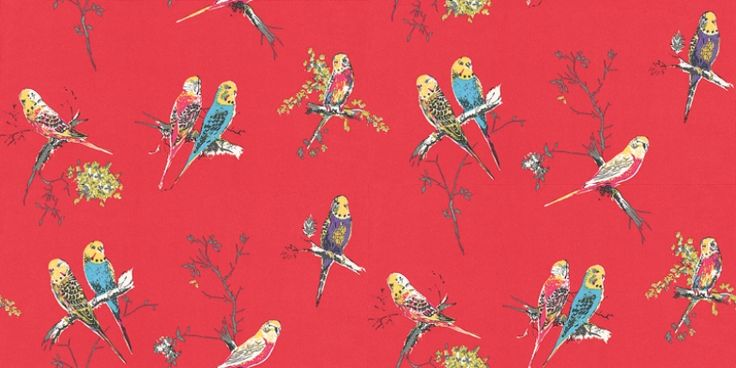 Chirpy Red (BL-1201-03) - Blendworth Wallpapers - Pretty little multi coloured budgerigars cutely perched on blossom twigs – creates a sweet all over design.  Budgies in blue, pink, green and purple on a bold red background. Please request sample for true colour match.