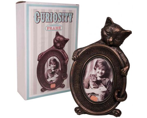 Cat Picture Frames X