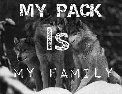 Family isn't only blood. Friends are family too. I love my friends who support & encourage me. They too are a part of my pack.