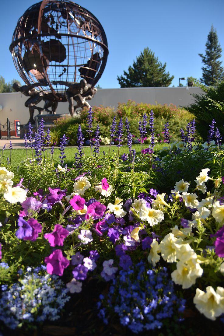 25 best summer flowers images on pinterest summer flowers flowers by season in colorado springs mightylinksfo