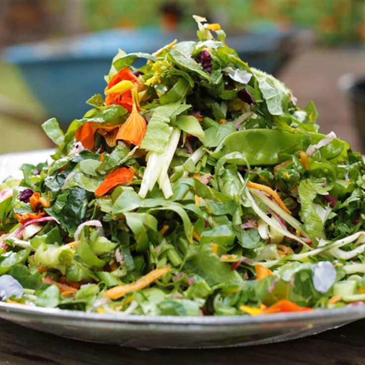 Try this Matt Stone's raw garden salad recipe by Chef Matt Stone. This recipe is from the show The Great Australian Cookbook.
