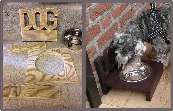 Trough for dogs on the patio. with jigsaw cut out, smoothed with sanding mouse, glued together (and reinforced with dowels), then painted, and then put into use :)