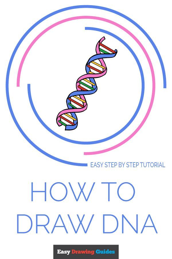 Dna Easy Drawing : drawing, Really, Drawing, Tutorial, Drawing,, Easy,, Drawings