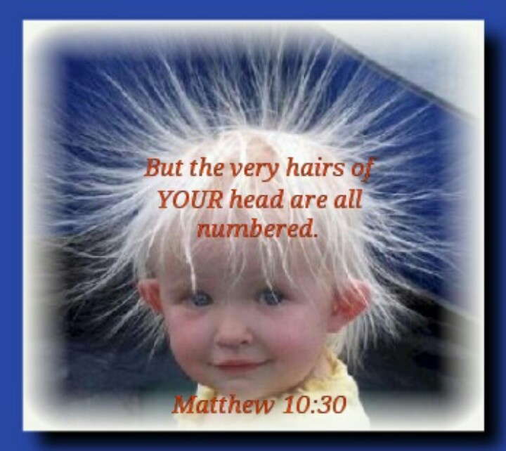 Matthew 10:30