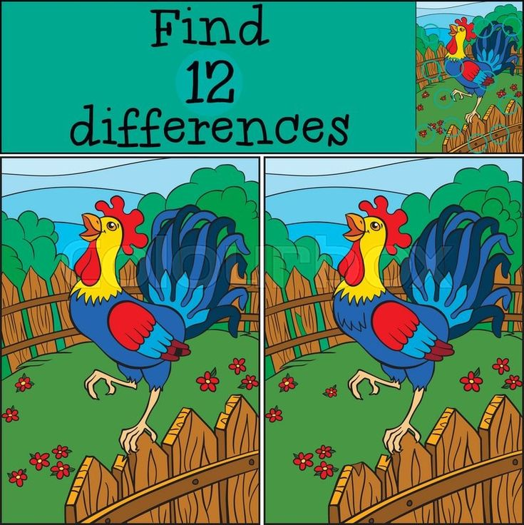 Stock vector of 'Children games: Find differences. Cute beautiful rooster stands on the fence and cries.'