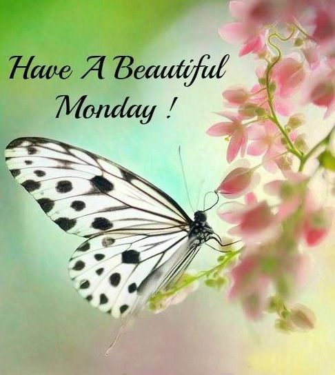 Good Morning Beautiful Niece : Best images about days of the week on pinterest