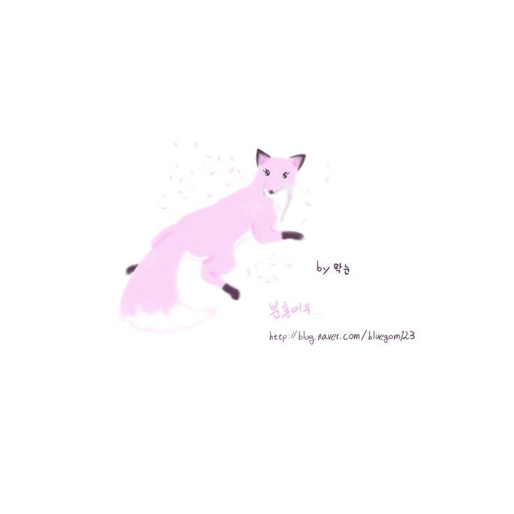 분홍여우, 여우, FOX, PINK