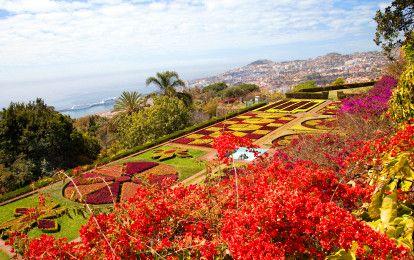 Madeira voor insiders: het onbekende gezicht van het vulkanische eiland in de Atlantische Oceaan