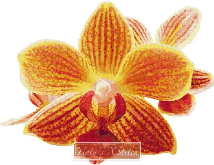 Orchid cross stitch kit