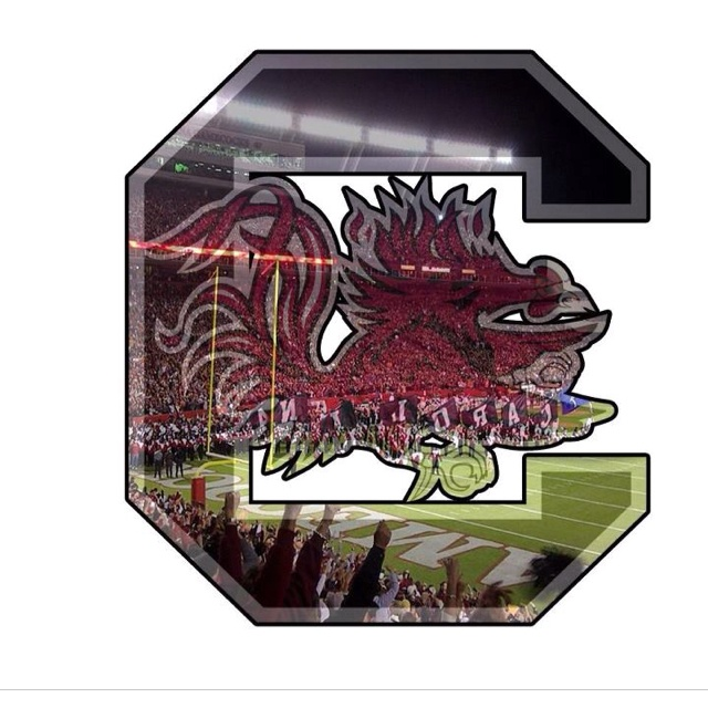USC Gamecocks!!Gamecock Country, Gamecock Pride, Carolina Gamecock, Gamecock National, Uscgamecock, Carolina Girls, Usc Gamecock, South Carolina, Fields