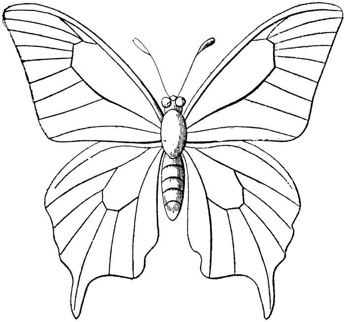 **FREE ViNTaGE DiGiTaL STaMPS**: Free Vintage Digital Stamp - Butterfly