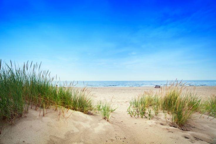 Fototapete nach Maß: Strand mit blauem Himmel