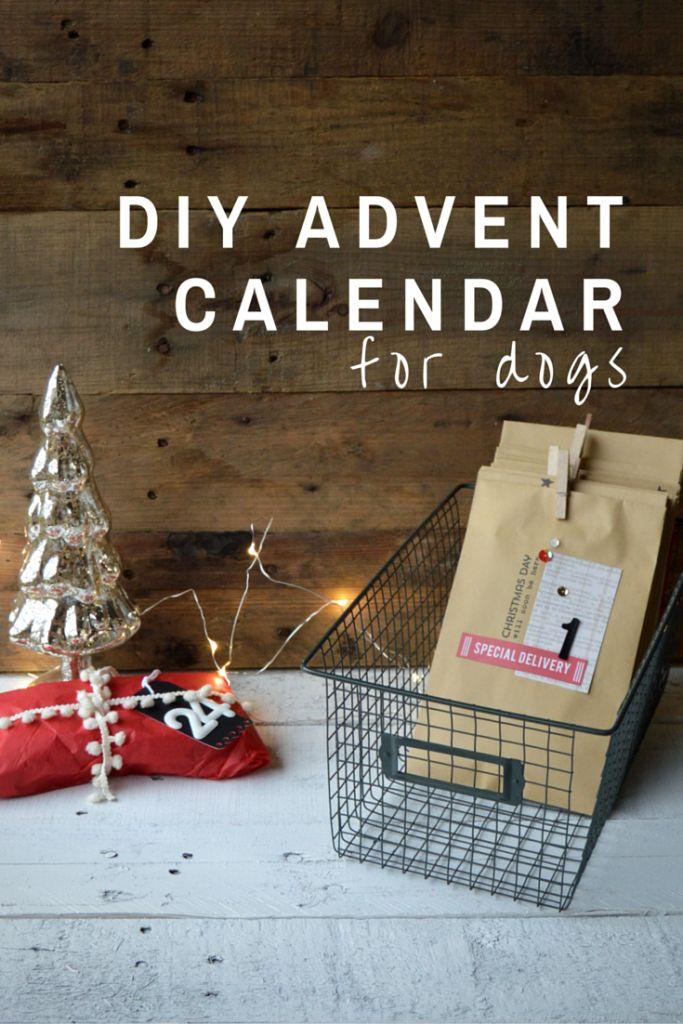 Diy Calendar Gift : Diy advent calendar for dogs what a fun gift idea