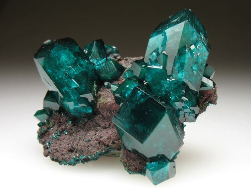 Dioptase crystals / Mineral Friends ♥