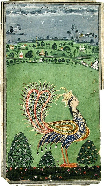 Mythical peacock with a woman's head, Indian miniature panting.  ca. 1750  Court: Hyderabad. opaque watercolor and gold on paper.