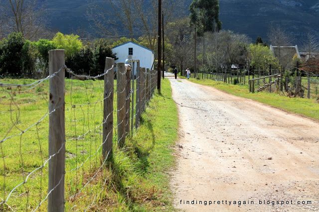 Finding Pretty Again: Greyton on a sunny winter's day