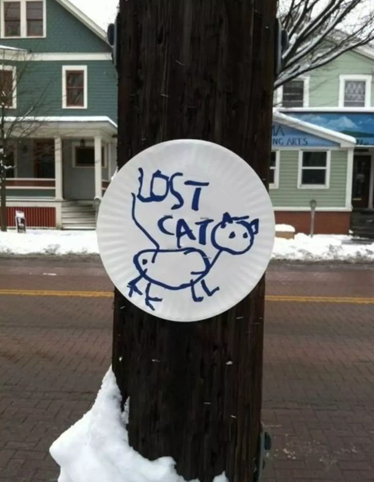 The 25+ best Lost cat poster ideas on Pinterest Iconic movies - lost dog flyer examples