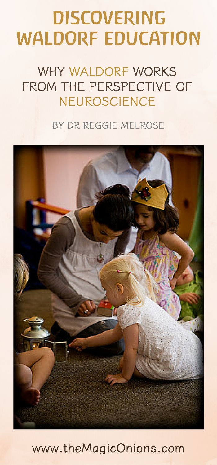 Why Waldorf Educations works from the perspective of Neuroscience from Dr Reggie…