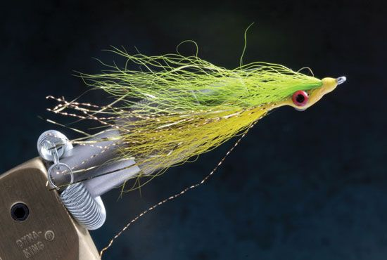 8 best s l bass images on pinterest fly fishing flies for Smallmouth bass fly fishing