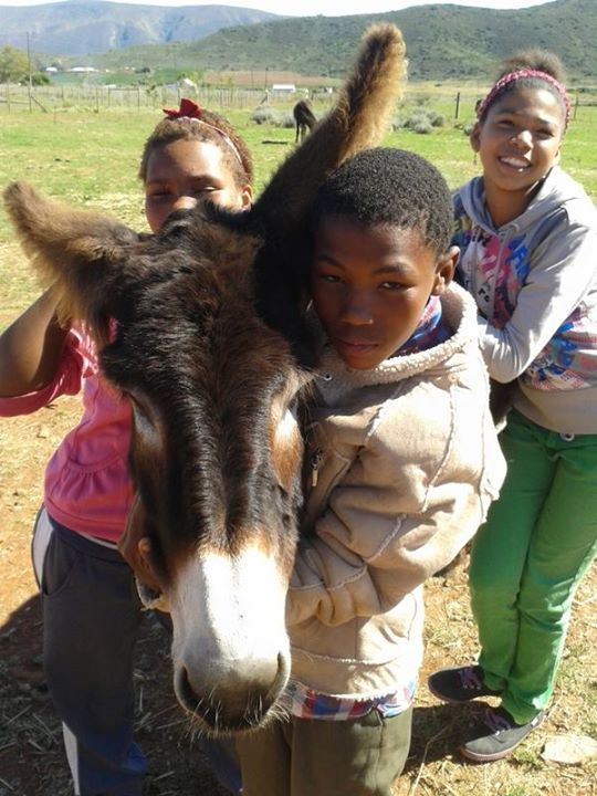 """""""The Bonnie People Project visited the Donkey Sanctuary!""""  Courtesy: Eseltjiesrus Donkey Sanctuary, McGregor, Western Cape (South Africa)."""
